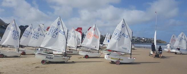 opti sailing 13